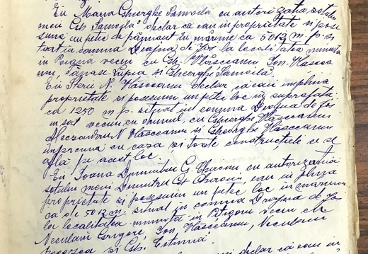 Document de partaj - Neculae M. Vlășceanu 1/2